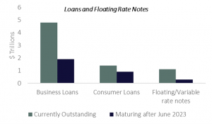Loans and Floating Rate Notes